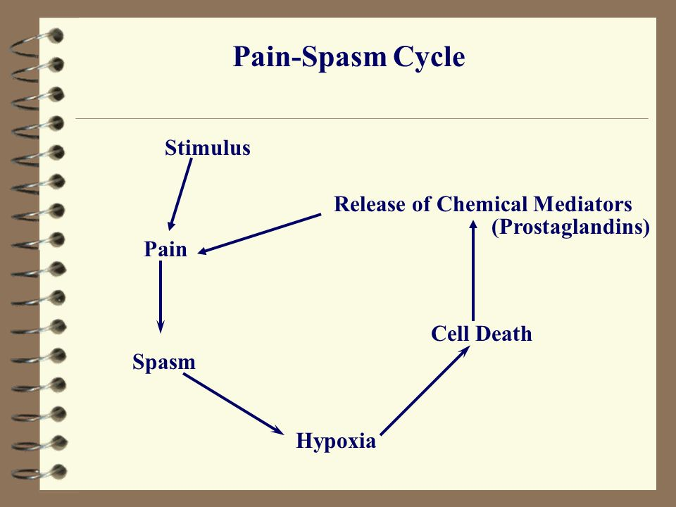 Pain-Spasm Cycle Pain Spasm Hypoxia Cell Death Release of Chemical Mediators Stimulus (Prostaglandins)