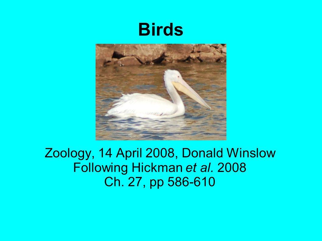 Birds Zoology, 14 April 2008, Donald Winslow Following Hickman et al. 2008 Ch. 27, pp 586-610