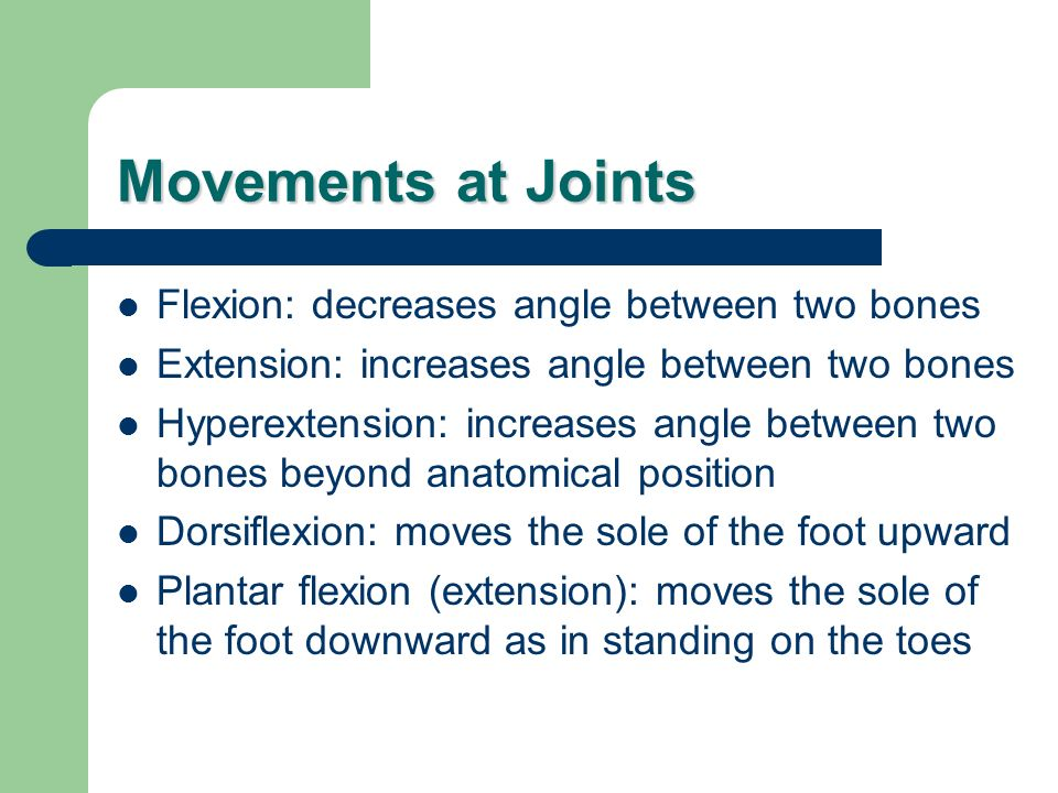 Movements at Joints Flexion: decreases angle between two bones Extension: increases angle between two bones Hyperextension: increases angle between tw