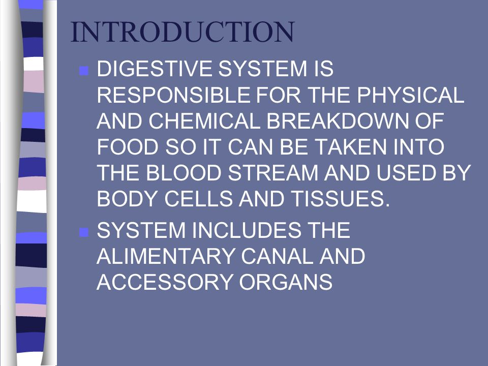 INTRODUCTION n DIGESTIVE SYSTEM IS RESPONSIBLE FOR THE PHYSICAL AND CHEMICAL BREAKDOWN OF FOOD SO IT CAN BE TAKEN INTO THE BLOOD STREAM AND USED BY BO