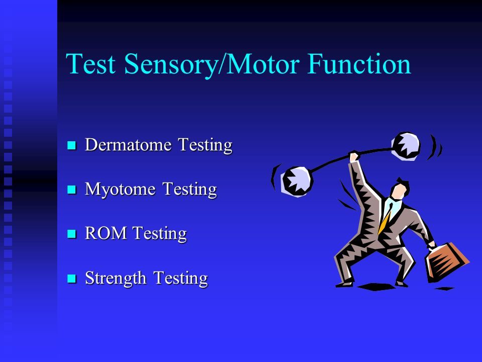 Test Sensory/Motor Function Dermatome Testing Dermatome Testing Myotome Testing Myotome Testing ROM Testing ROM Testing Strength Testing Strength Test