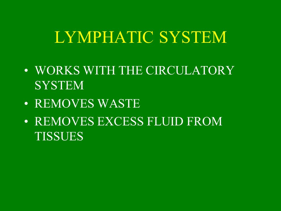 LYMPHATIC SYSTEM WORKS WITH THE CIRCULATORY SYSTEM REMOVES WASTE REMOVES EXCESS FLUID FROM TISSUES