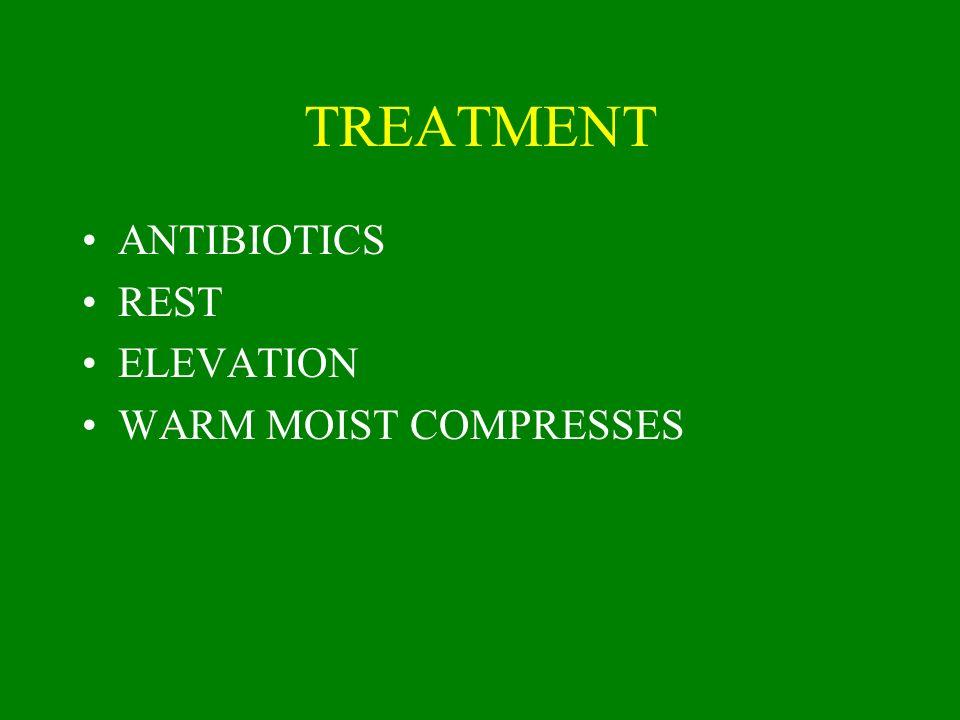 TREATMENT ANTIBIOTICS REST ELEVATION WARM MOIST COMPRESSES
