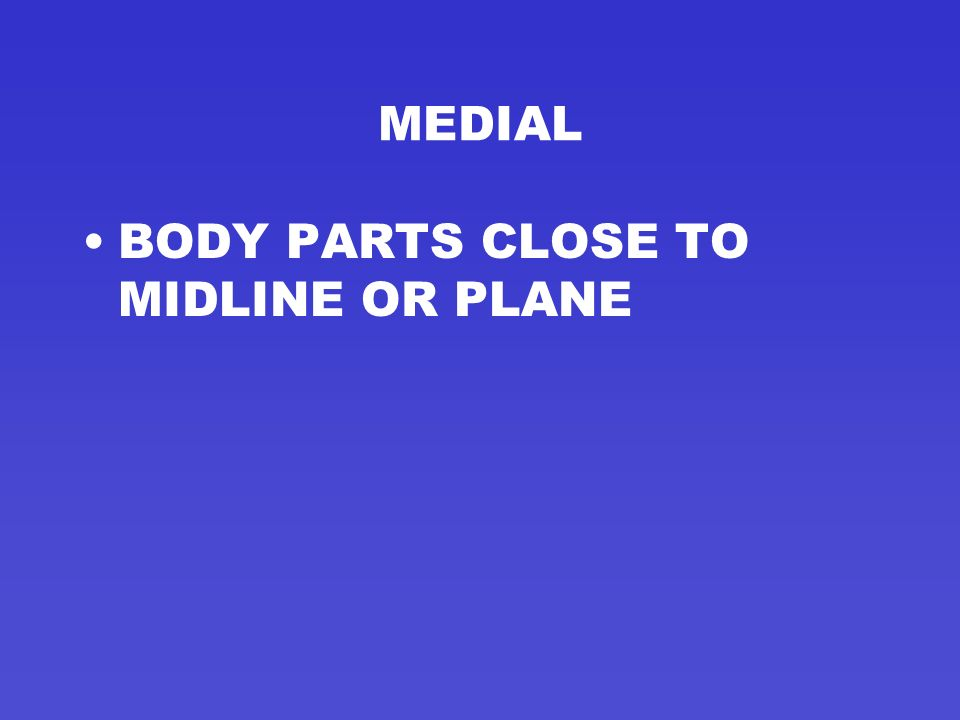 MIDSAGITTAL OR MEDIAN PLANE DIVIDES THE BODY INTO RIGHT AND LEFT SIDES