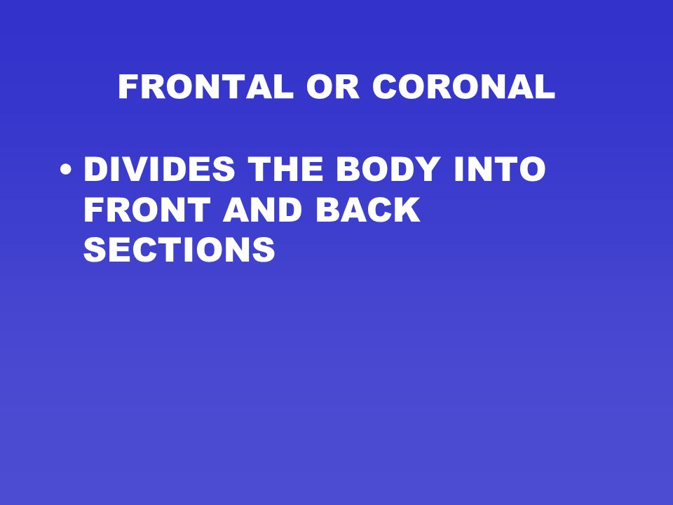 FRONTAL OR CORONAL THIRD PLANE OF THE BODY