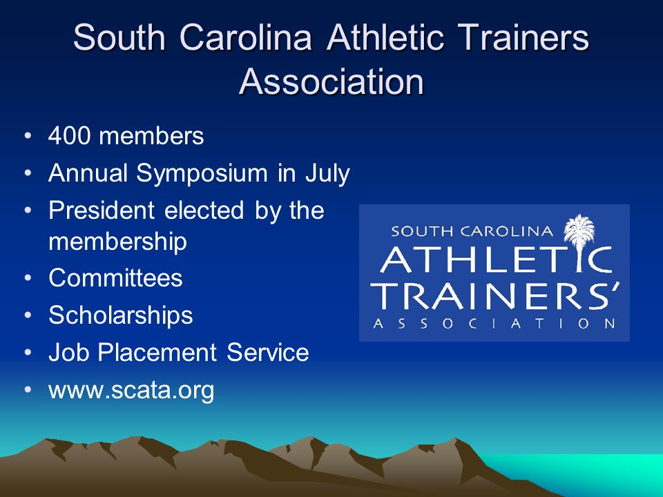 South Carolina Athletic Trainers Association 400 members Annual Symposium in July President elected by the membership Committees Scholarships Job Placement Service www.scata.org
