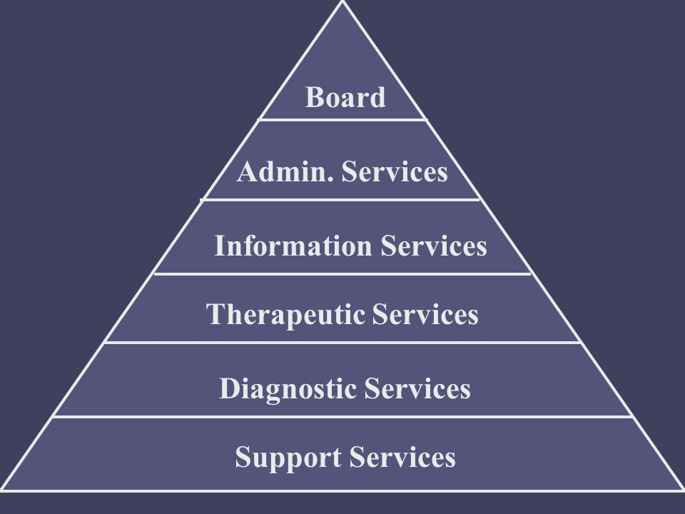Admin. Services Information Services Therapeutic Services Diagnostic Services Support Services Board