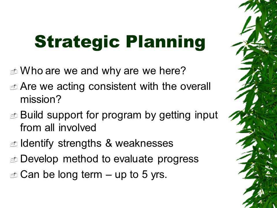 Strategic Planning Who are we and why are we here.
