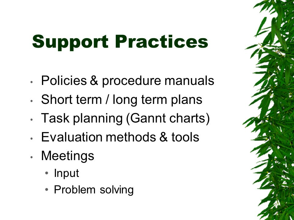 Support Practices Policies & procedure manuals Short term / long term plans Task planning (Gannt charts) Evaluation methods & tools Meetings Input Problem solving