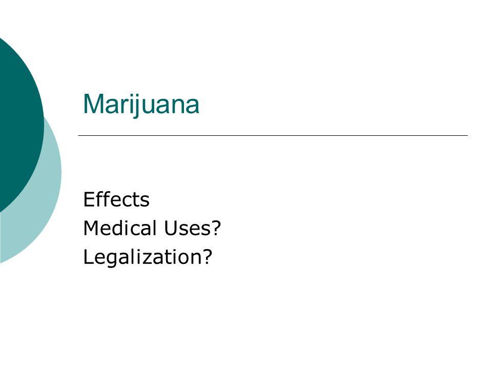 Marijuana Effects Medical Uses Legalization