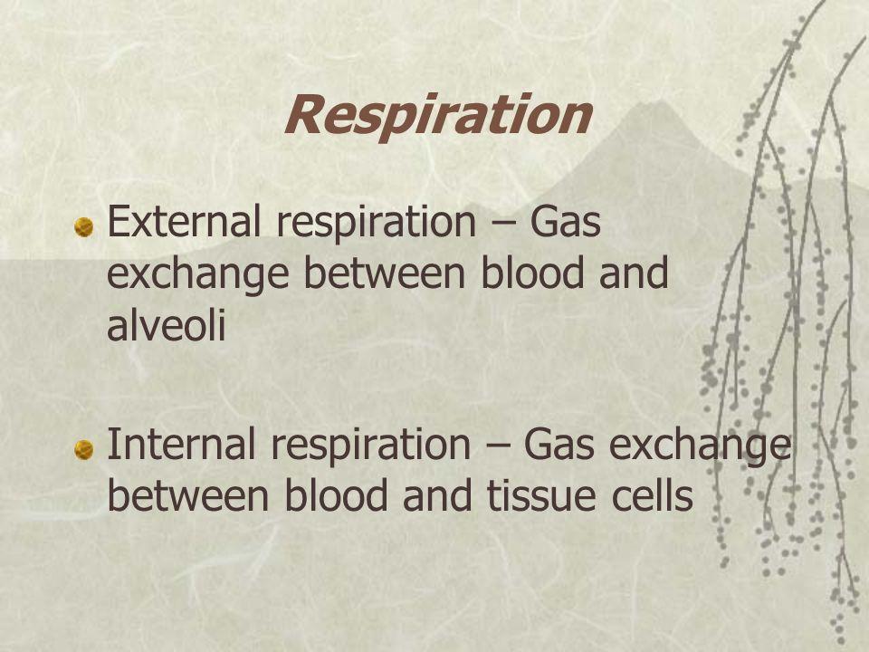 Respiration External respiration – Gas exchange between blood and alveoli Internal respiration – Gas exchange between blood and tissue cells