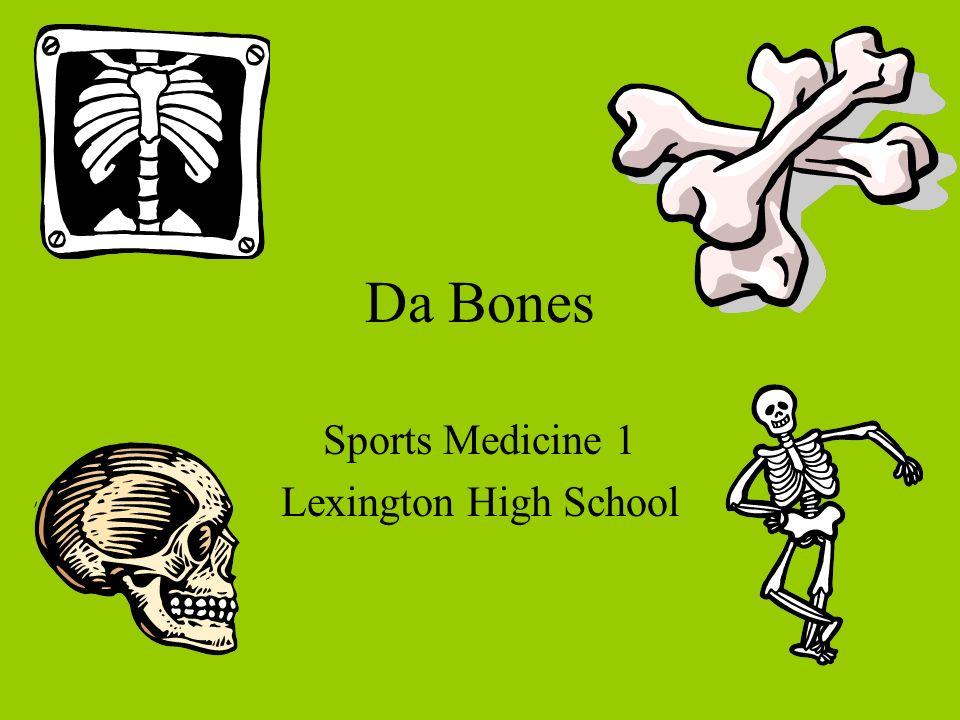 Da Bones Sports Medicine 1 Lexington High School