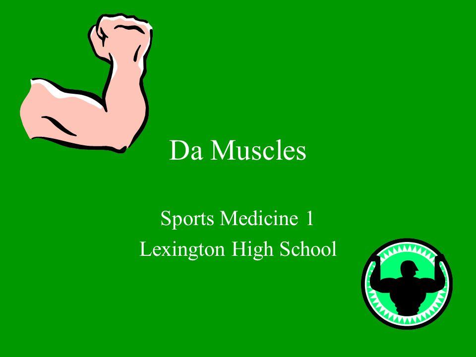 Da Muscles Sports Medicine 1 Lexington High School