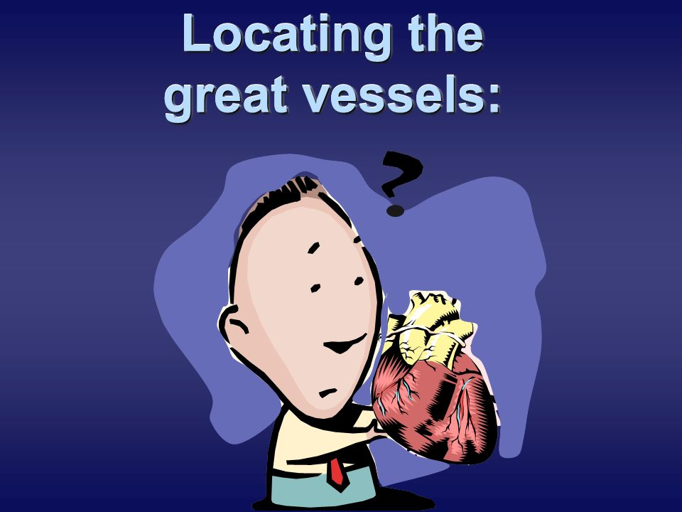 Locating the great vessels: