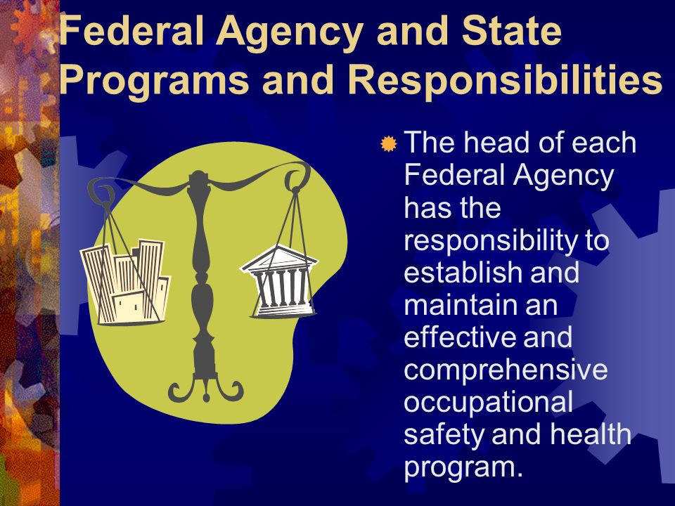 Federal Agency and State Programs and Responsibilities The head of each Federal Agency has the responsibility to establish and maintain an effective a