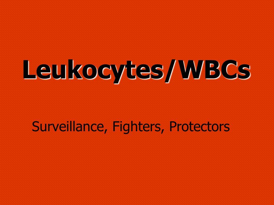 Leukocytes/WBCs Surveillance, Fighters, Protectors