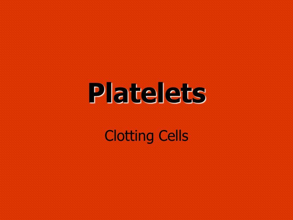 Platelets Clotting Cells