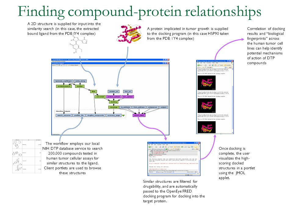 Finding compound-protein relationships A protein implicated in tumor growth is supplied to the docking program (in this case HSP90 taken from the PDB 1Y4 complex) The workflow employs our local NIH DTP database service to search 200,000 compounds tested in human tumor cellular assays for similar structures to the ligand.