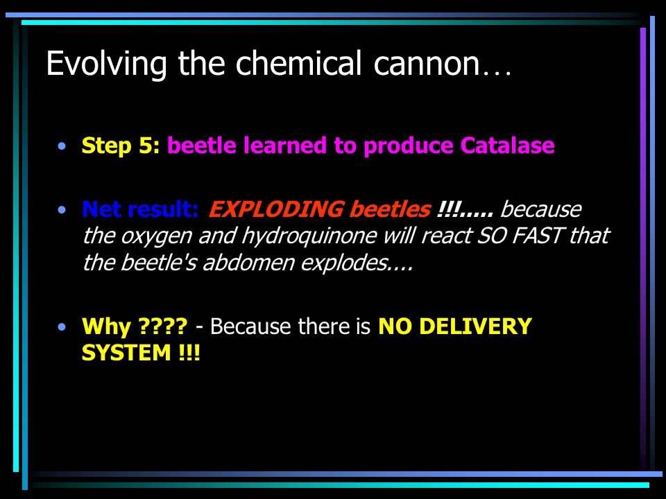 Evolving the chemical cannon … Step 5: beetle learned to produce Catalase Net result: EXPLODING beetles !!!..... because the oxygen and hydroquinone w