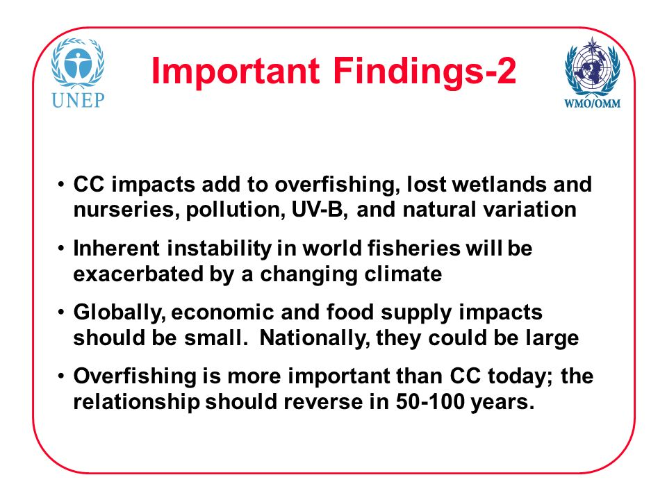 Important Findings-2 CC impacts add to overfishing, lost wetlands and nurseries, pollution, UV-B, and natural variation Inherent instability in world