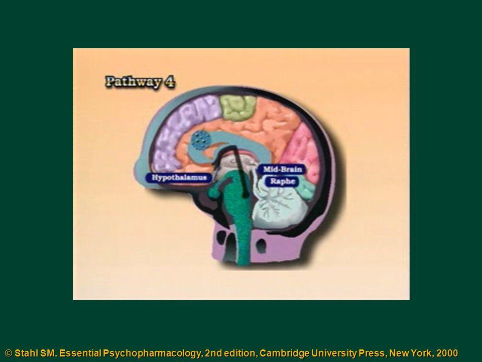 © Stahl SM. Essential Psychopharmacology, 2nd edition, Cambridge University Press, New York, 2000