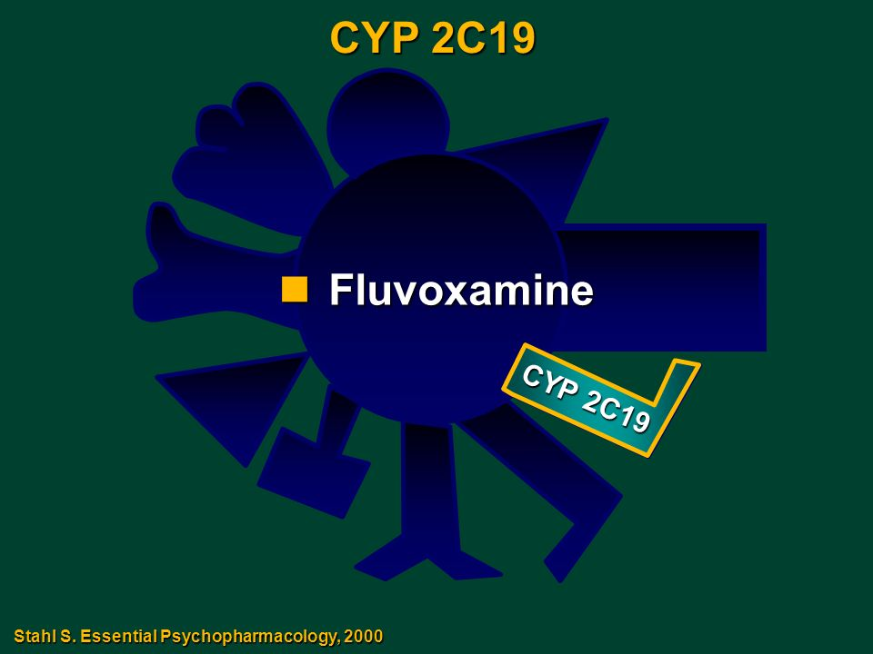CYP 2C19 nFluvoxamine Stahl S. Essential Psychopharmacology, 2000