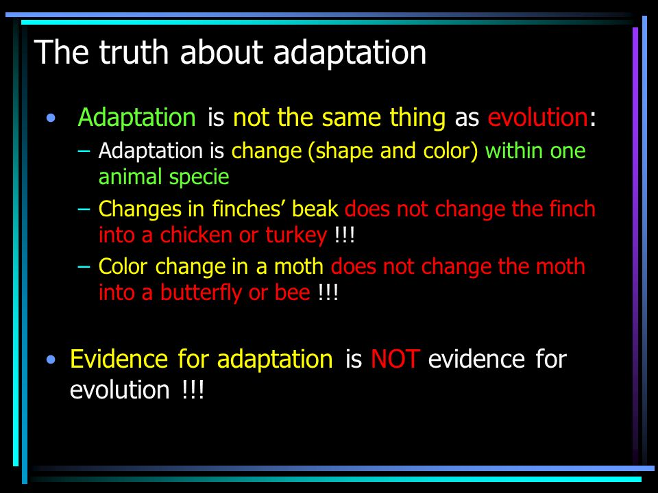 The truth about adaptation Adaptation is not the same thing as evolution: –Adaptation is change (shape and color) within one animal specie –Changes in