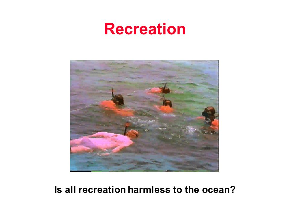 Recreation Is all recreation harmless to the ocean?