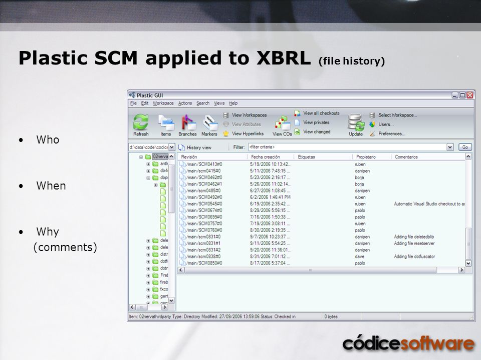 Plastic SCM applied to XBRL (file history) Who When Why (comments)