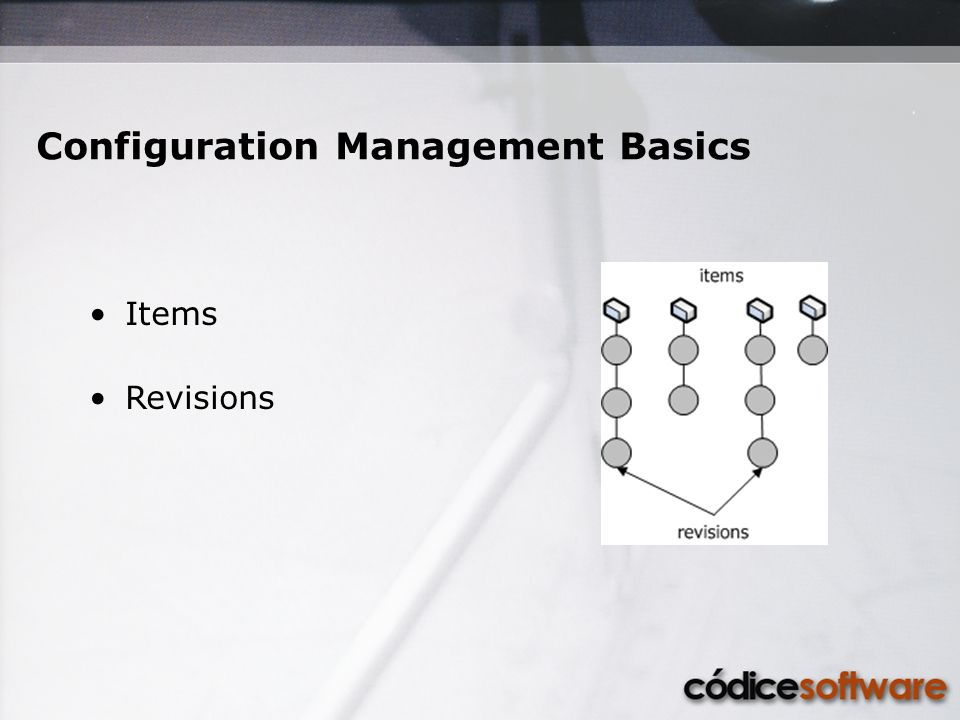 Items Revisions Configuration Management Basics