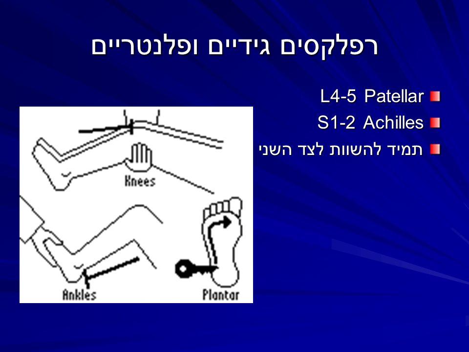 רפלקסים גידיים ופלנטריים Patellar 4-5L Achilles 1-2S תמיד להשוות לצד השני !