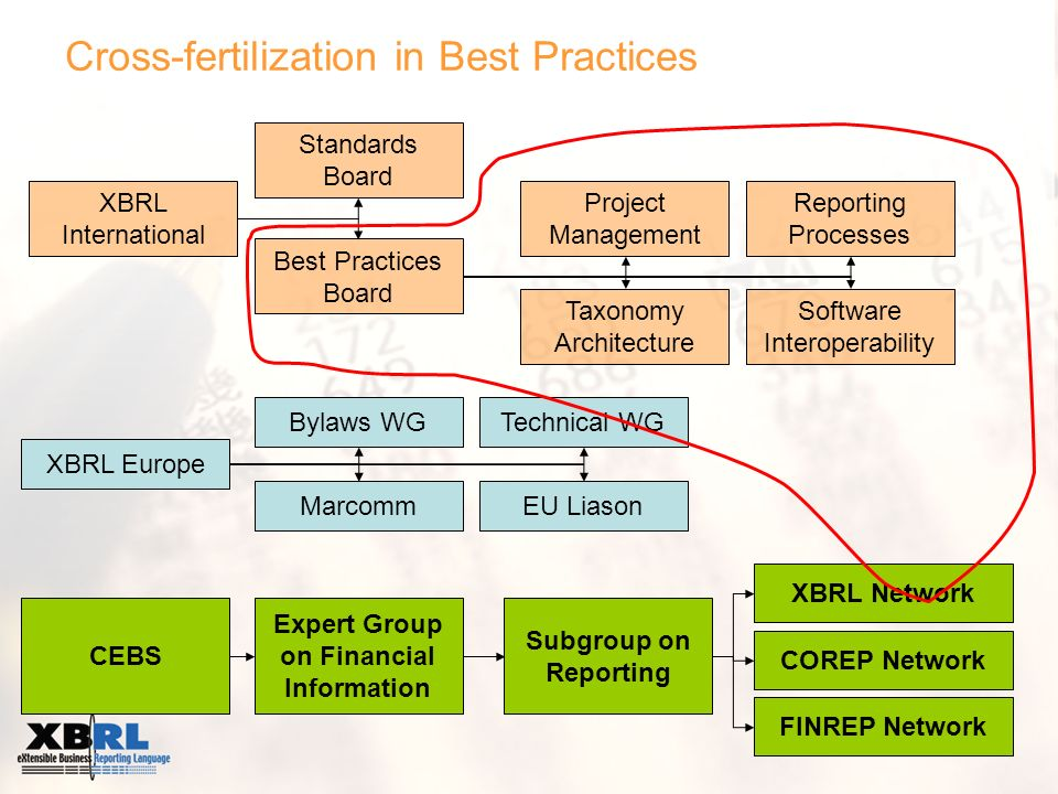 Cross-fertilization in Best Practices XBRL International Best Practices Board Standards Board Software Interoperability Taxonomy Architecture Reportin