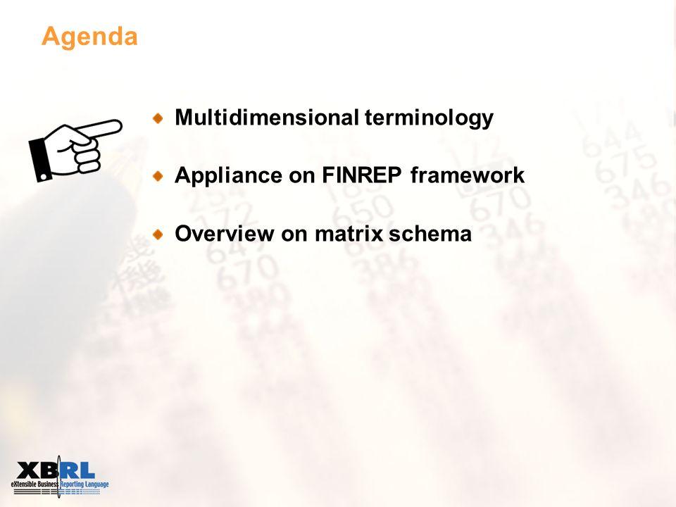 Agenda Multidimensional terminology Appliance on FINREP framework Overview on matrix schema