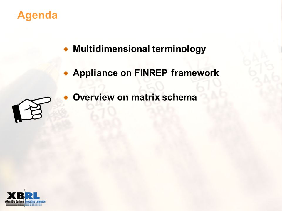 Agenda Multidimensional terminology Appliance on FINREP framework Overview on matrix schema
