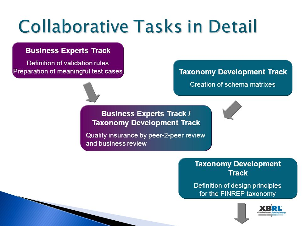 Collaborative Tasks in Detail Business Experts Track Definition of validation rules Preparation of meaningful test cases Taxonomy Development Track Cr