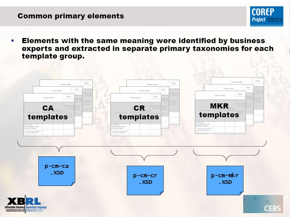 Common primary elements CA templates CR templates MKR templates p-cm-ca.XSD p-cm-cr.XSD p-cm-mkr.XSD Elements with the same meaning were identified by business experts and extracted in separate primary taxonomies for each template group.