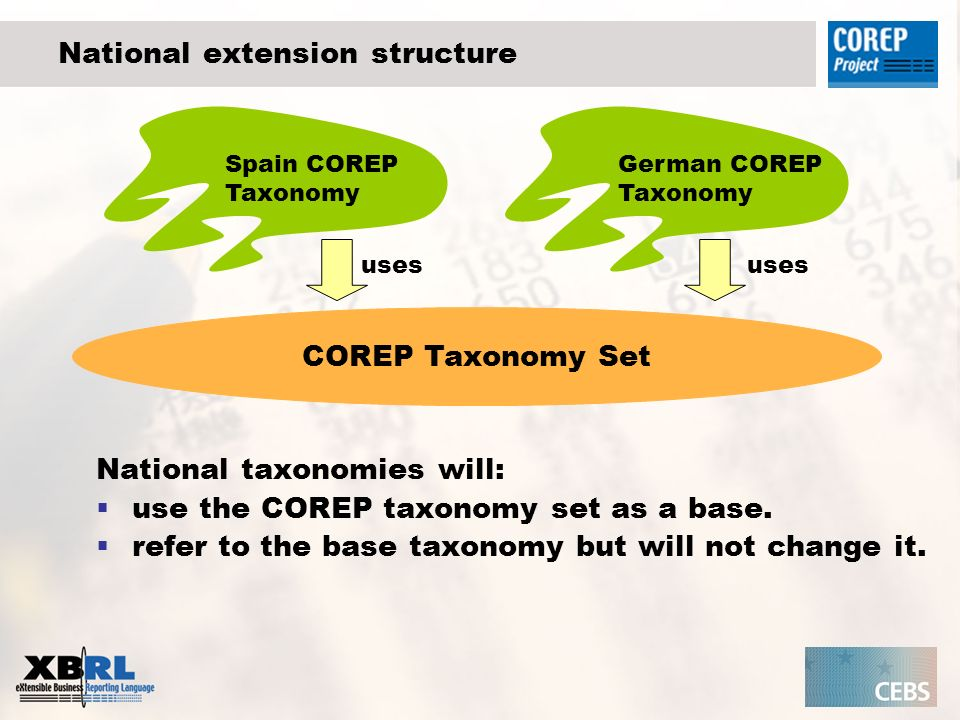 Agenda COREP taxonomy customisation requirements Concept and structure of national customisation Customisation of Labels References Data Types Template structure Typed dimensions Integrate general information Summary Questions