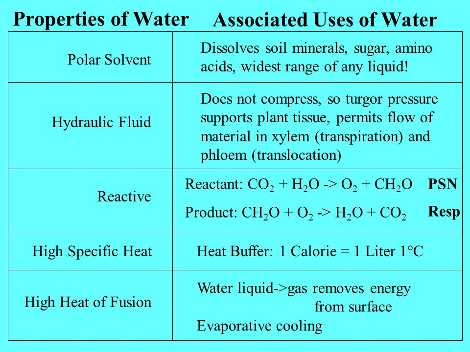 Properties of Water Associated Uses of Water Polar Solvent Dissolves soil minerals, sugar, amino acids, widest range of any liquid.