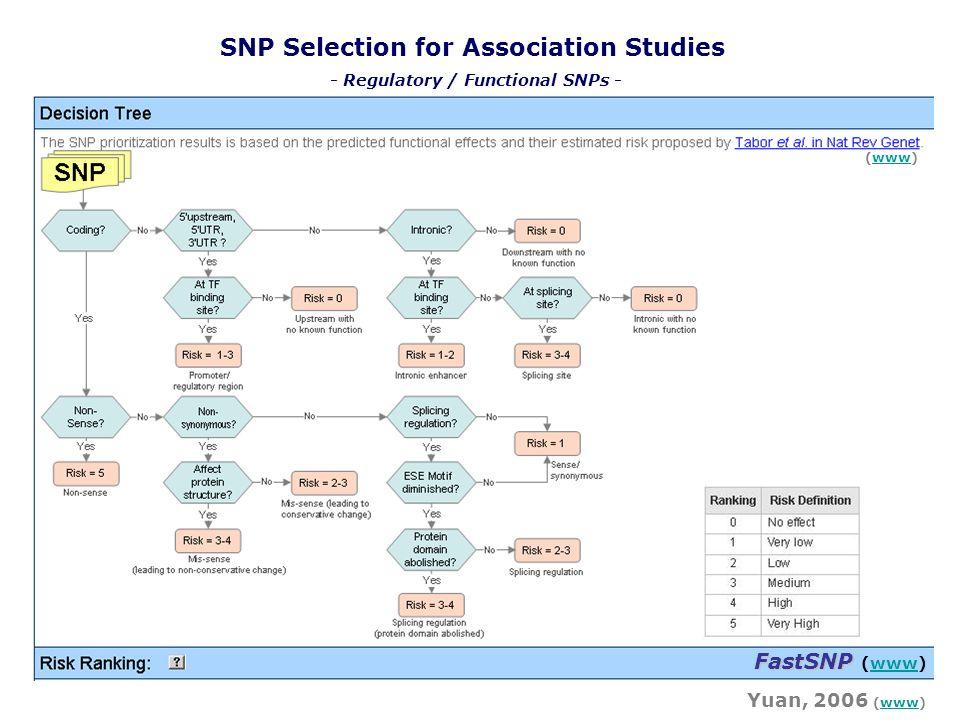 SNP Selection for Association Studies FastSNP FastSNP (www)www Yuan, 2006 (www)www (www)www - Regulatory / Functional SNPs -
