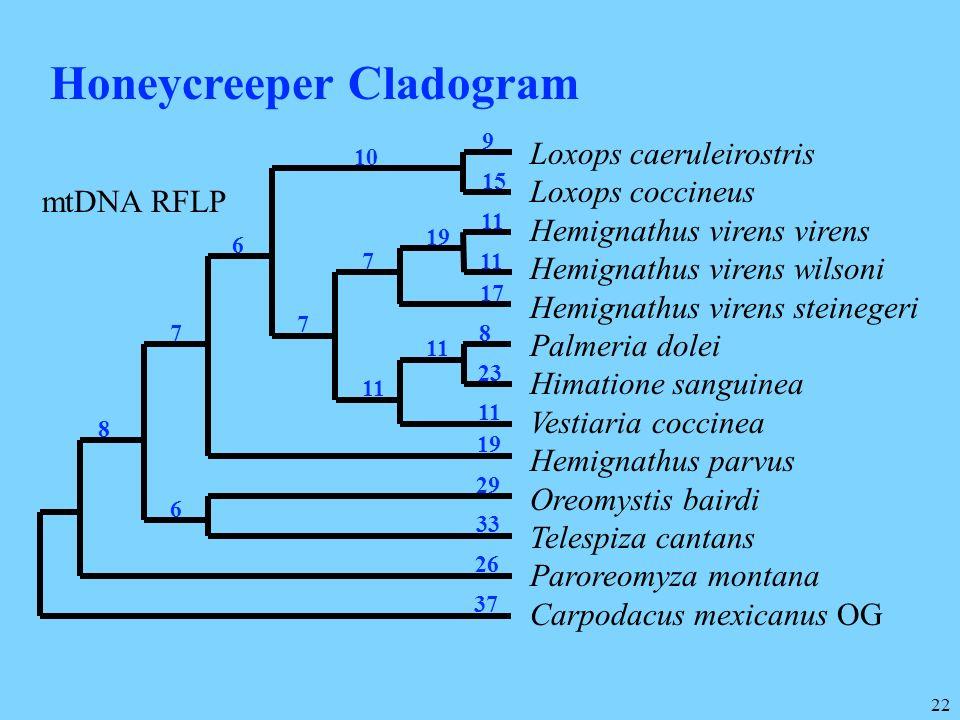 22 Loxops caeruleirostris Loxops coccineus Hemignathus virens virens Hemignathus virens wilsoni Hemignathus virens steinegeri Palmeria dolei Himatione