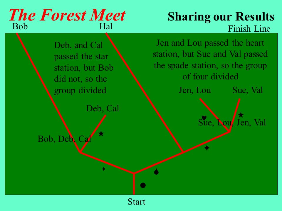 The Forest Meet The rest are autapomorphies BobSueDebLouJenCalHalValTotal xxxxxxxx8 xxxxx5 xx2 x1 xxxx4 xx2 x1 xx2 x1 xxx3 x1 x1