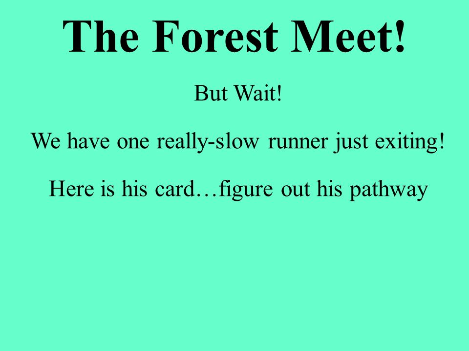 But Wait! We have one really-slow runner just exiting! Here is his card…figure out his pathway The Forest Meet!
