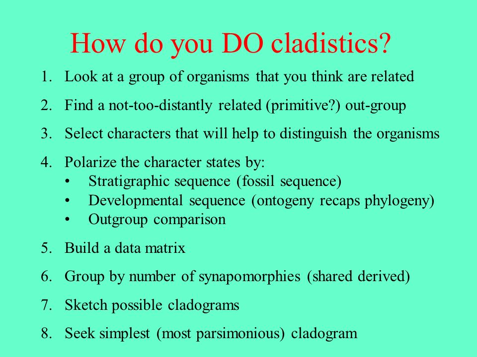 How do you DO cladistics? 1.Look at a group of organisms that you think are related 2.Find a not-too-distantly related (primitive?) out-group 3.Select