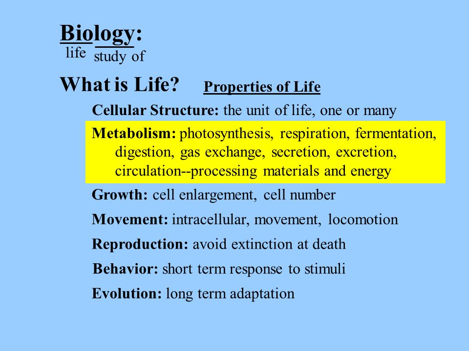 Homeostasis - metabolism All of these nutritional modes are found among prokaryotes.