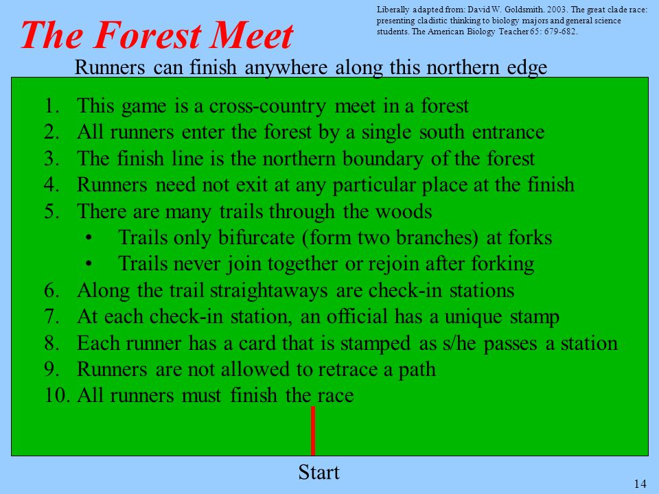 14 The Forest Meet Runners can finish anywhere along this northern edge Start 1.This game is a cross-country meet in a forest 2.All runners enter the forest by a single south entrance 3.The finish line is the northern boundary of the forest 4.Runners need not exit at any particular place at the finish 5.There are many trails through the woods Trails only bifurcate (form two branches) at forks Trails never join together or rejoin after forking 6.Along the trail straightaways are check-in stations 7.At each check-in station, an official has a unique stamp 8.Each runner has a card that is stamped as s/he passes a station 9.Runners are not allowed to retrace a path 10.All runners must finish the race Liberally adapted from: David W.