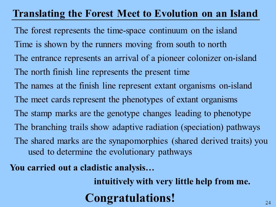 24 Translating the Forest Meet to Evolution on an Island The forest represents the time-space continuum on the island Time is shown by the runners mov