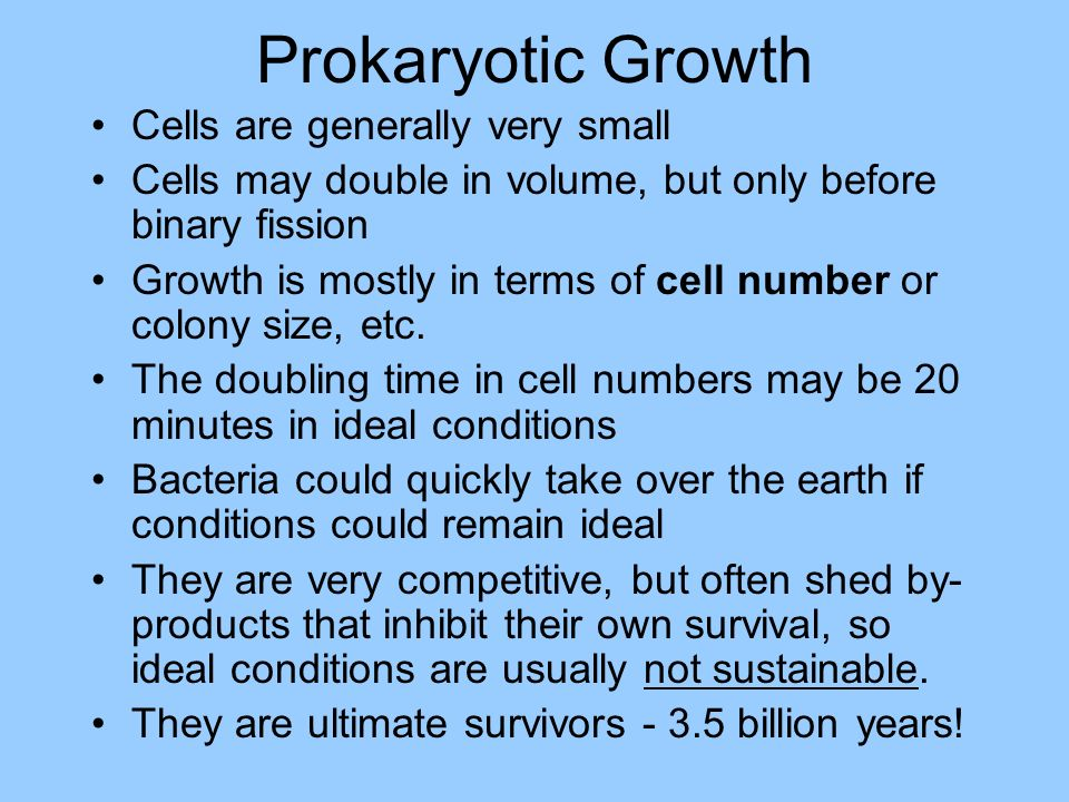 Prokaryotic Growth Cells are generally very small Cells may double in volume, but only before binary fission Growth is mostly in terms of cell number