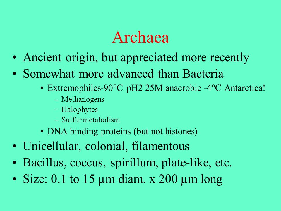 Archaea Ancient origin, but appreciated more recently Somewhat more advanced than Bacteria Extremophiles-90°C pH2 25M anaerobic -4°C Antarctica! –Meth