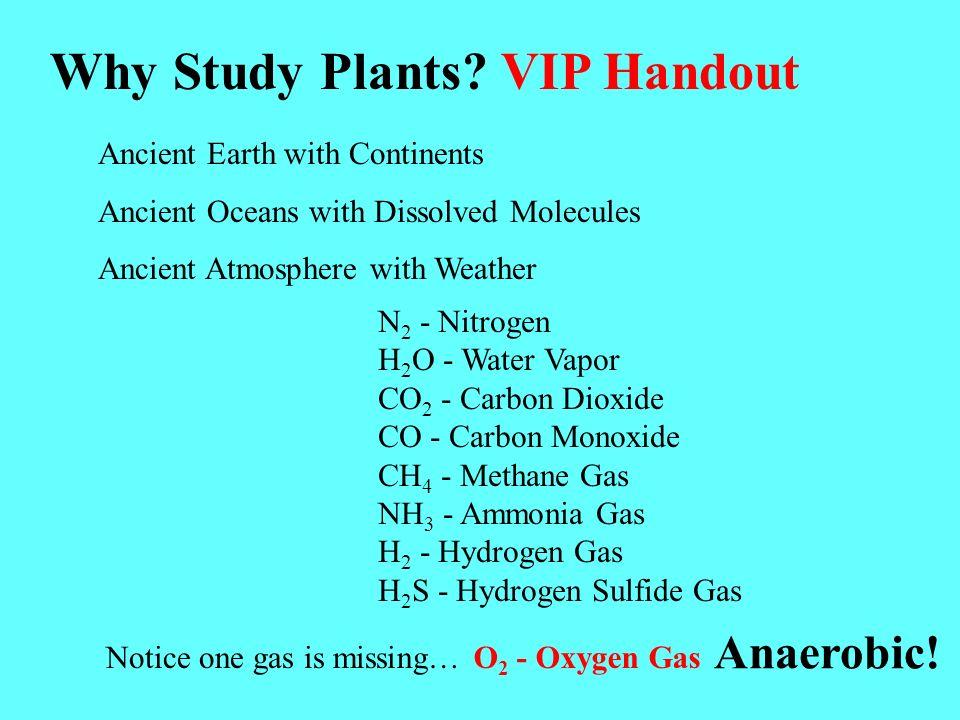 Why Study Plants.