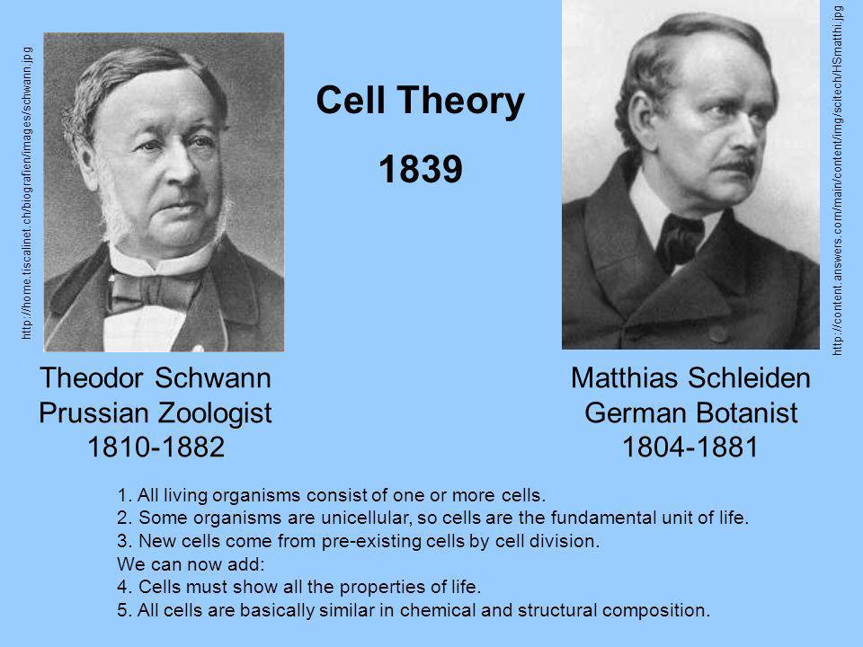 Theodor Schwann Prussian Zoologist 1810-1882 Matthias Schleiden German Botanist 1804-1881 1. All living organisms consist of one or more cells. 2. Som